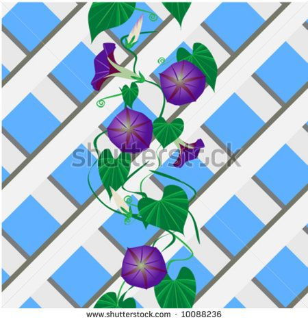 1000+ images about Morning Glory Art/ill. on Pinterest.