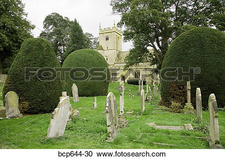 Stock Photography of Finely trimmed hedges in graveyard.