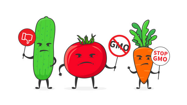 Best Genetically Modified Food Illustrations, Royalty.