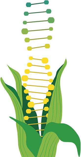 A Delectable Debate: Labeling GMOs.