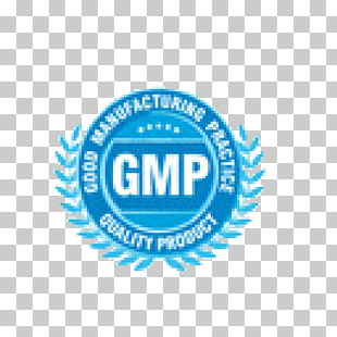 Good manufacturing practice Logo Certification Car Quality.