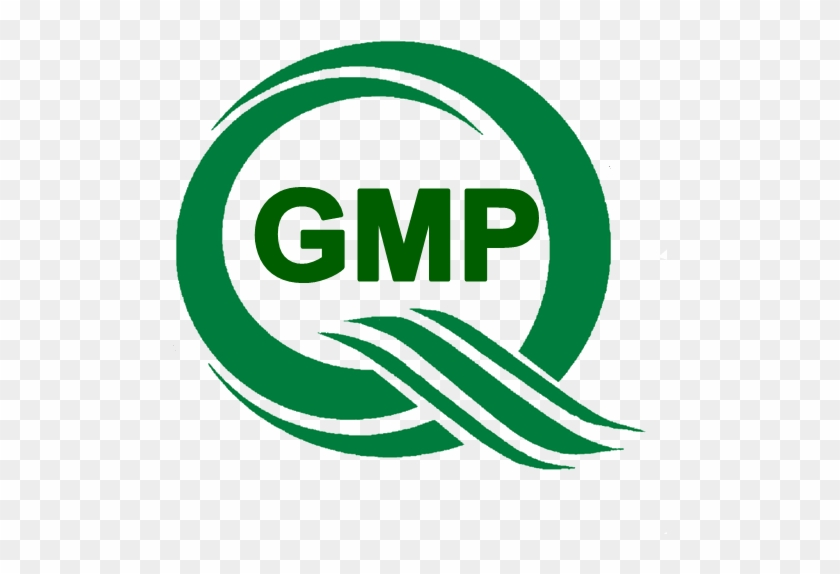 Gmp Thai Logo Png, Transparent Png.