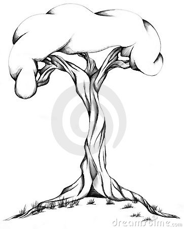 Twisted Trunk Tree Stock Illustrations.