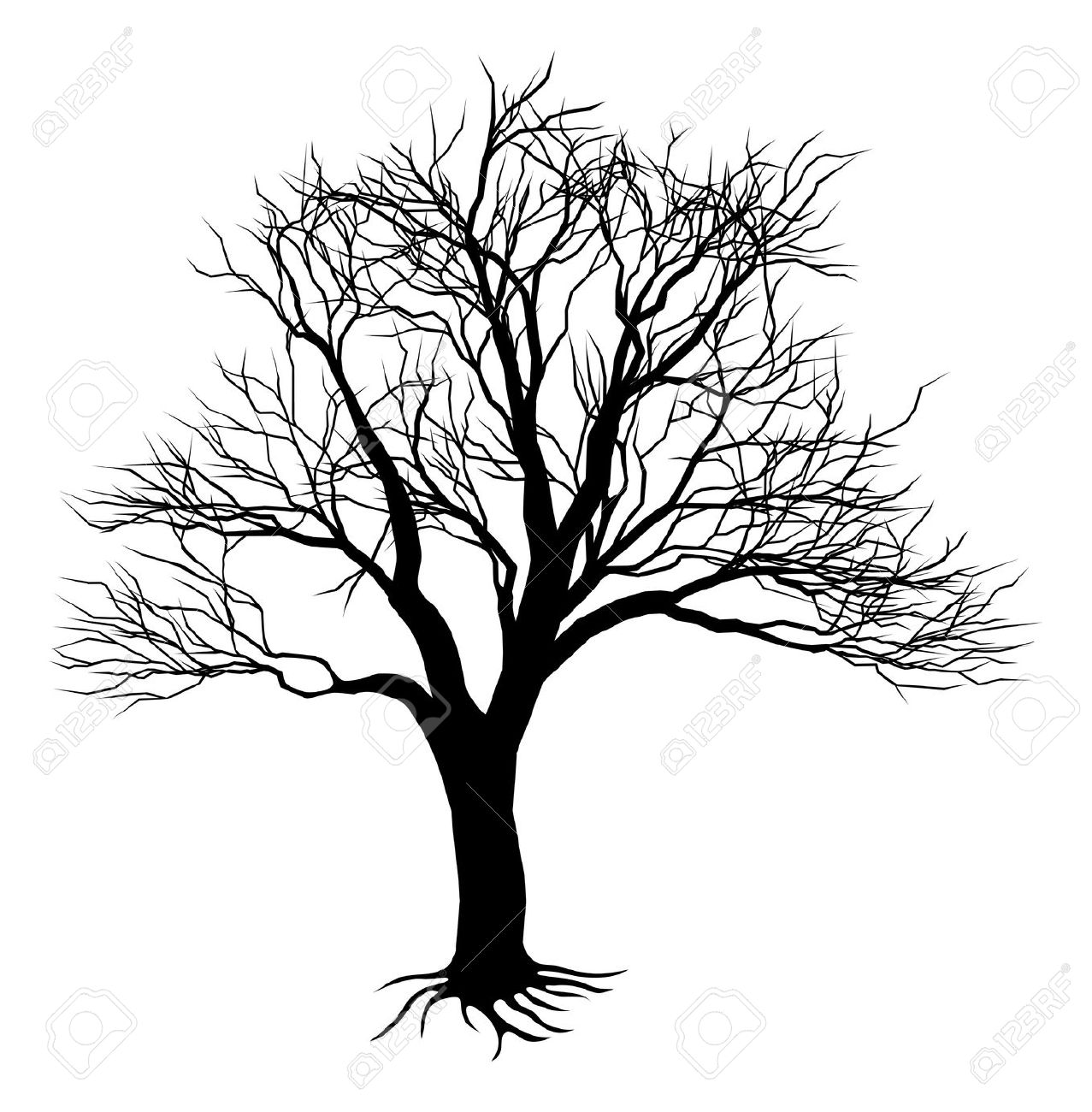 Scary Bare Black Tree Silhouette Stock Photos Images. Royalty Free.