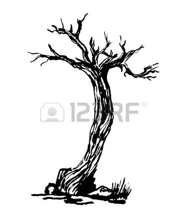 58,273 Tree Line Cliparts, Stock Vector And Royalty Free Tree Line.