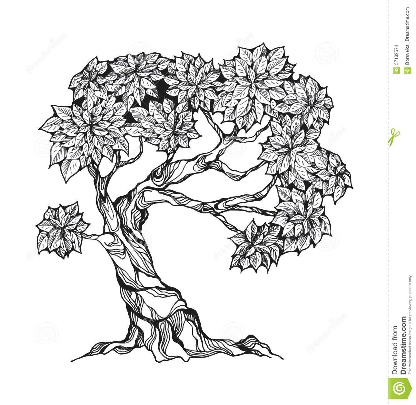 Gnarled Tree With Leaves Stock Vector.