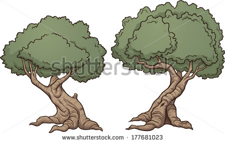 Gnarly Tree Stock Vectors, Images & Vector Art.