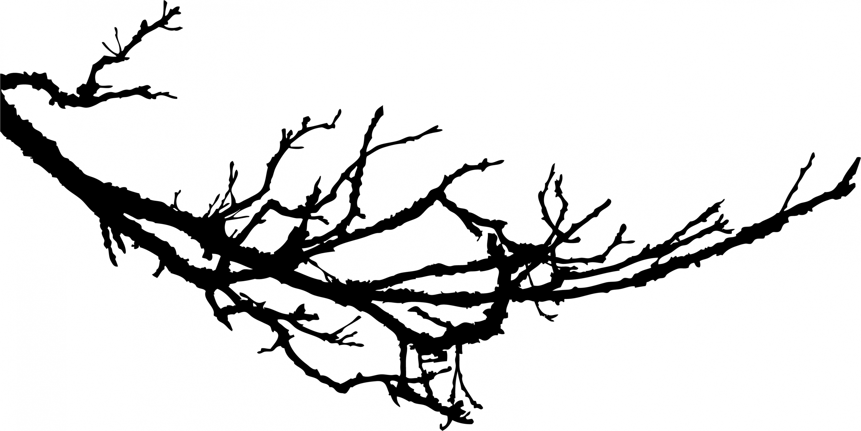 Gnarly Branch Silhouette Wall Sticker Large Tree Clipart.