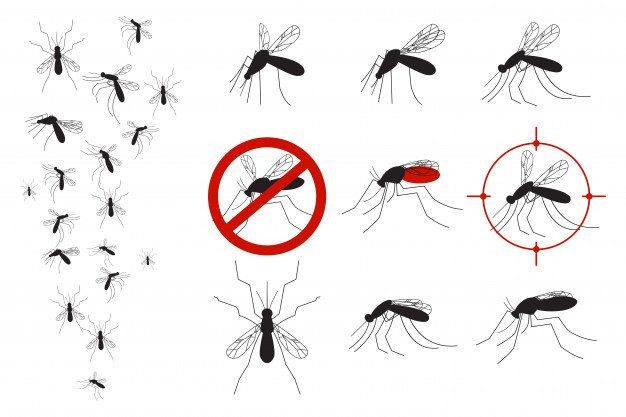 Mosquitoes and gnats vector set Vector.