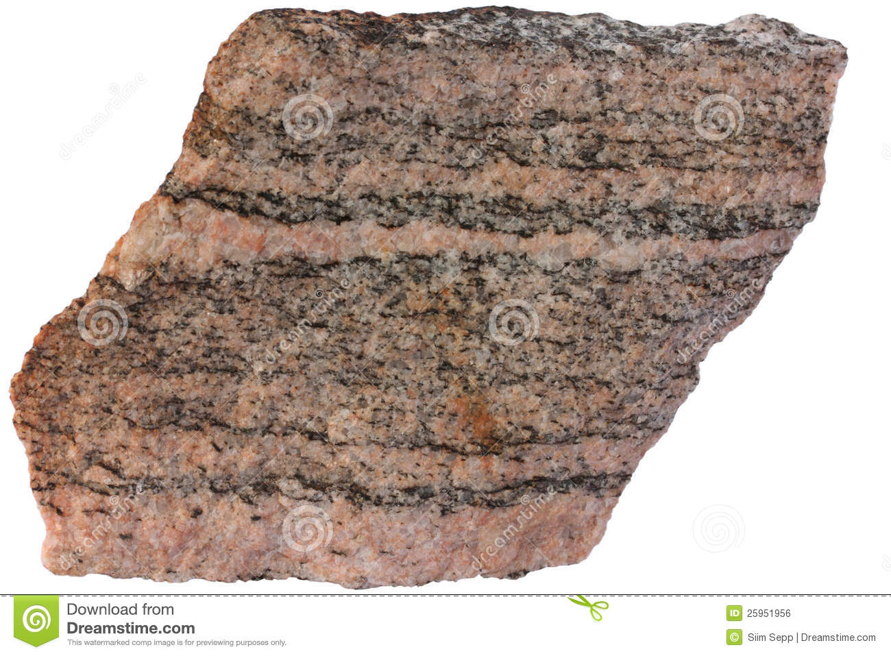 Banded Metamorphic Rock Gneiss From Karelia Royalty Free Stock.