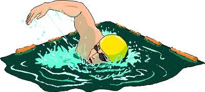 Swimming clipart swim clipart image 4.
