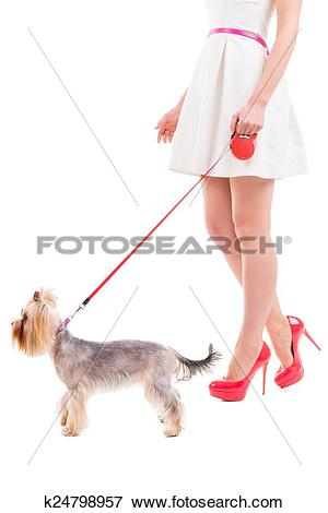 Picture of Ready to go walkies. Side view cropped image of woman.