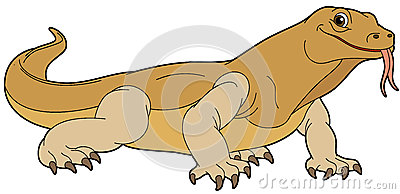 Goanna Lizard Stock Illustrations, Vectors, & Clipart.
