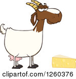 Clipart goats cheese.
