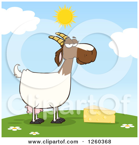 Clipart of a Red and White Female Boer Goat Doe with Cheese on a.