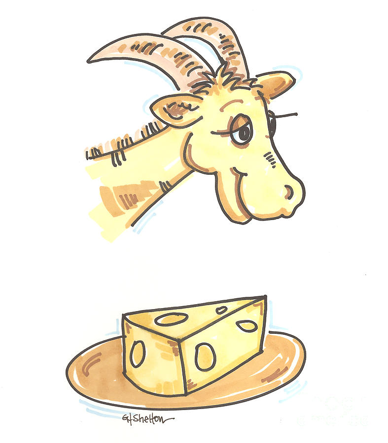 Goat Cheese Drawing by Gail Shelton.
