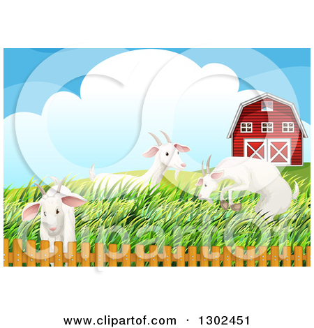 Clipart of White Goats Frolicking in Tall Grasses by a Pasture.