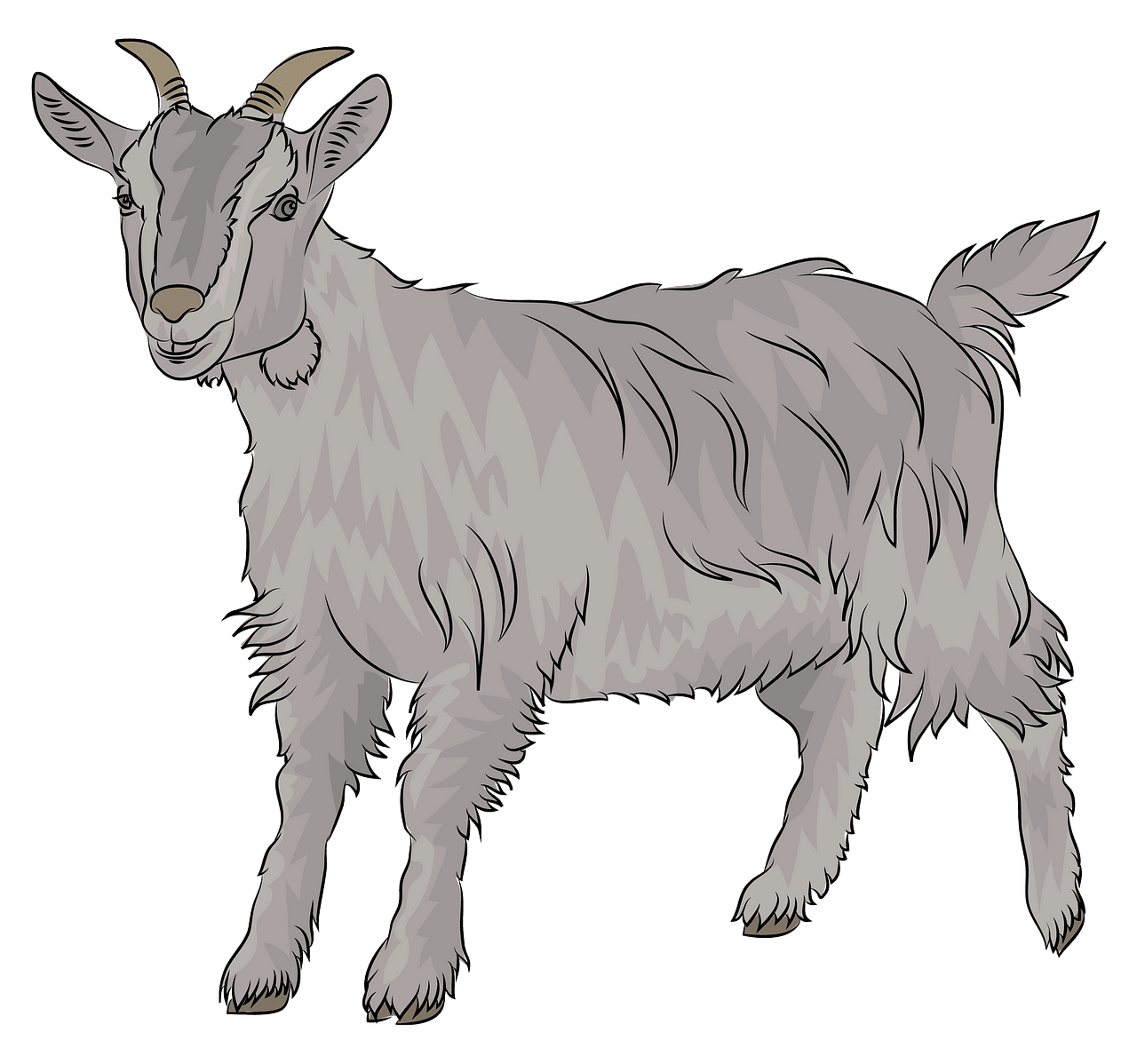 Goat clipart. Free download..
