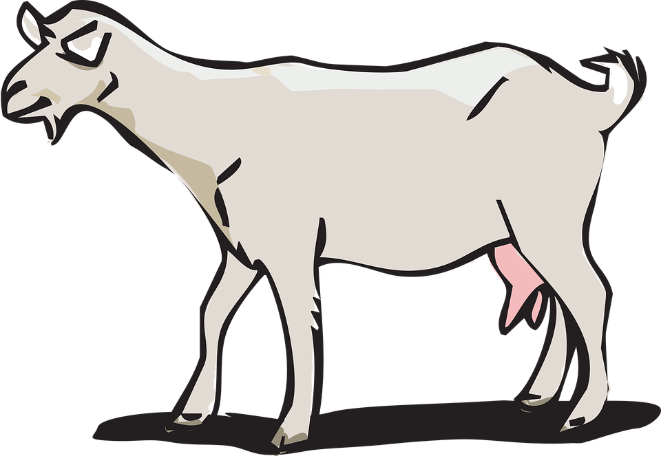 Free vector graphic: Goat, Animal Farm.