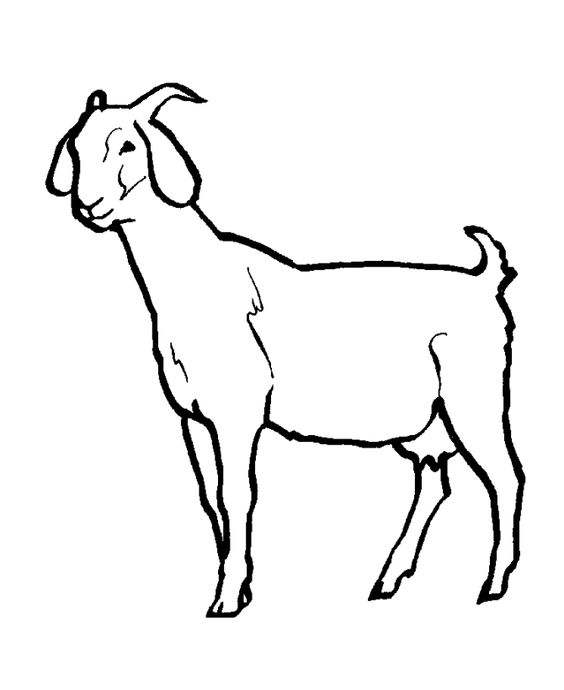 download Goat Coloring Pages for kids.