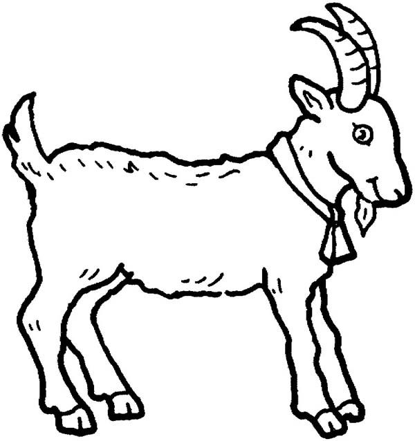 Goat sheet clipart Clipground