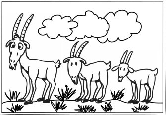 Billy Goats Gruff Colour.