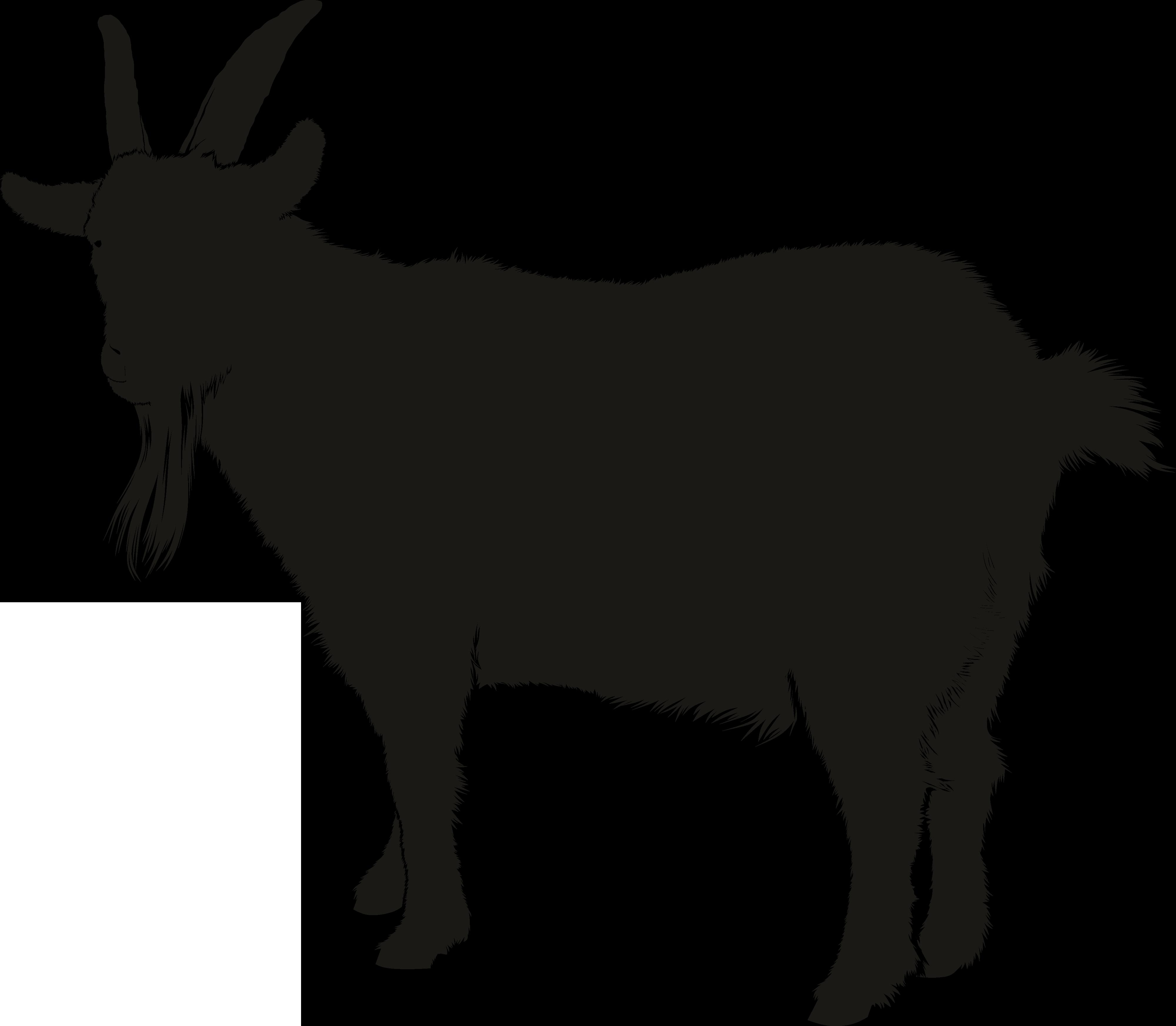 Boer goat Silhouette Clip art.