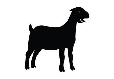 Image result for nubian milk goat silhouette goat Clipart.