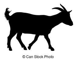 She goat Vector Clipart EPS Images. 45 She goat clip art.
