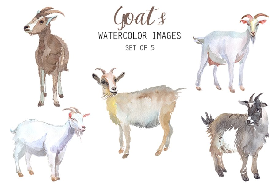 Watercolor Goats Clipart.