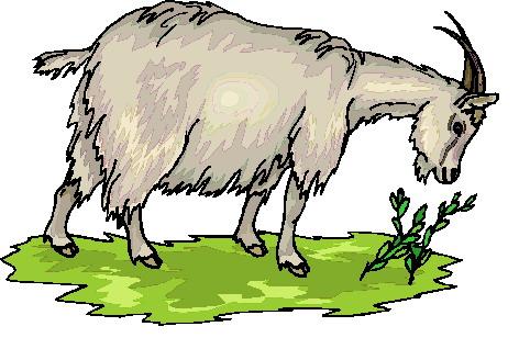 Goat Clip Art Free Download.