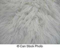 Stock Photo of anglo nubain goat wool background.