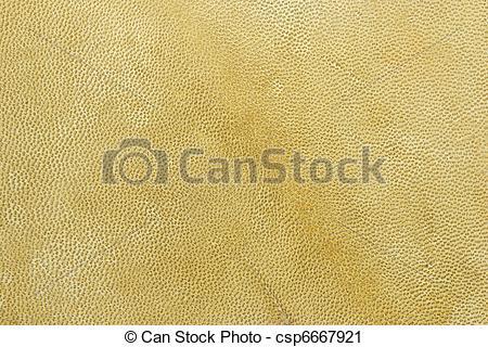 Clipart of skin(0).jpg.