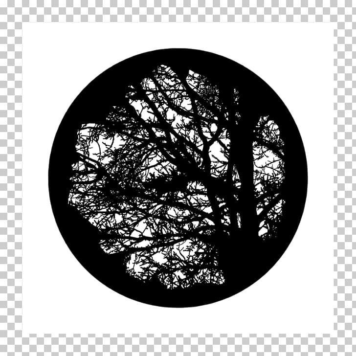 Light Gobo Tree Glass Projector, light PNG clipart.