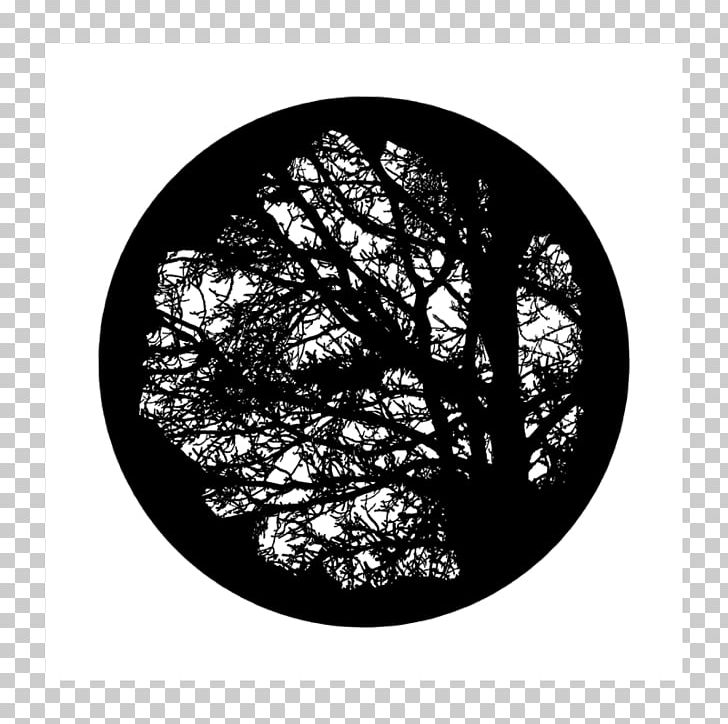 Light Gobo Tree Glass Projector PNG, Clipart, Apollo, Bay Laurel.