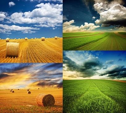God field plateau high ifen Free stock photos in JPEG (.jpg.