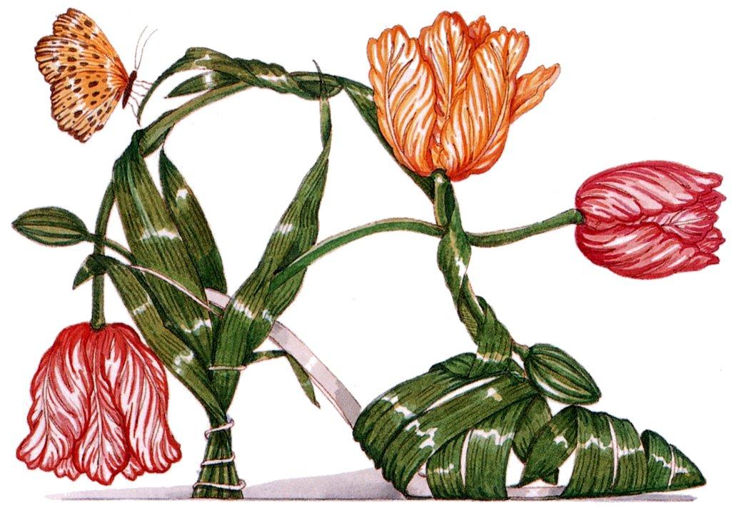 Dennis Kyte — Tulip (1024x715).