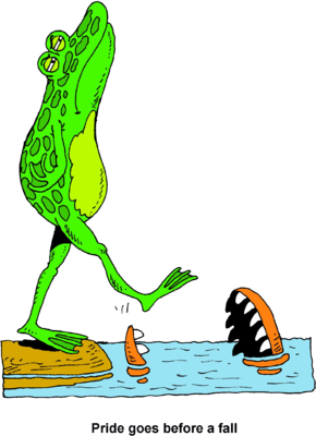 Image: Haughty Frog About to Step Into an Alligators Mouth.