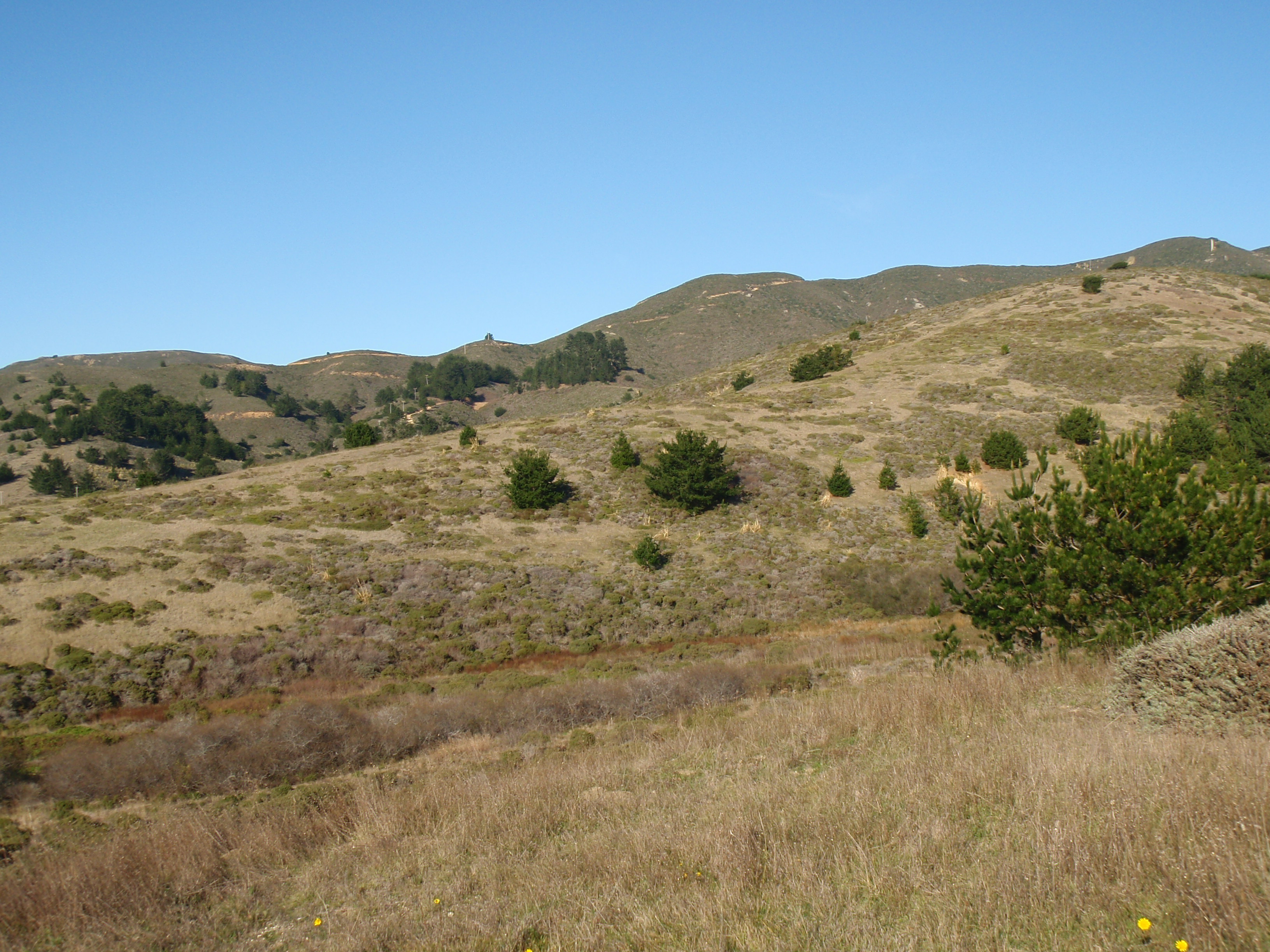 File:Goga Rancho Corral de Tierra PC050023.JPG.
