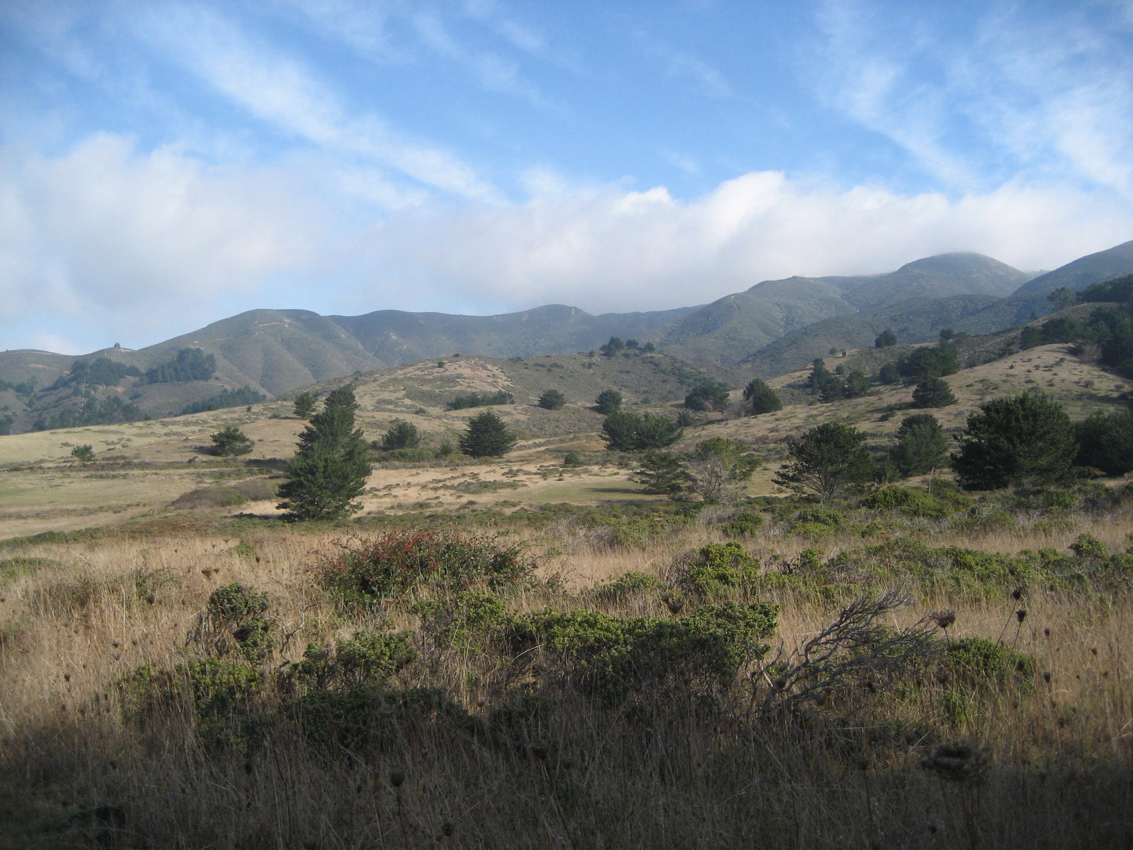 File:Goga Rancho Corral de Tierra IMG 2333.jpg.