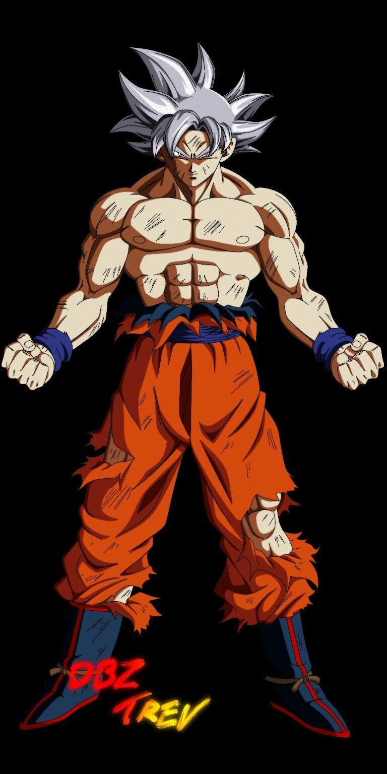 Goku mastered Ultra Instinct.