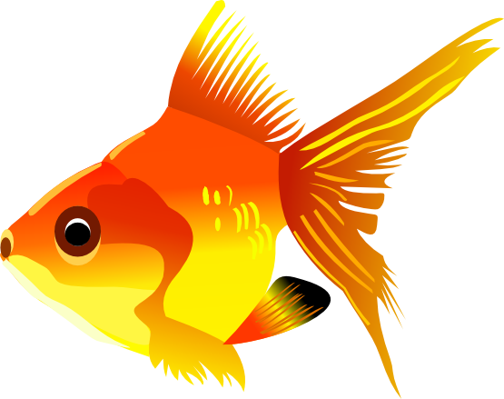Clipart of gold color fish.
