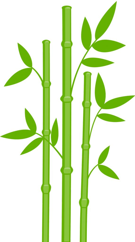 1000+ images about Clipart trees and leaves on Pinterest.