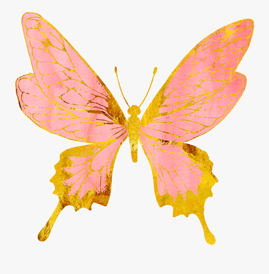Pink And Gold Butterfly , Free Transparent Clipart.