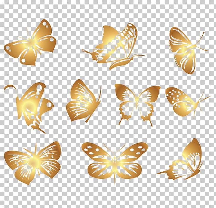 Butterfly Euclidean , Beautiful butterfly, gold butterflies.