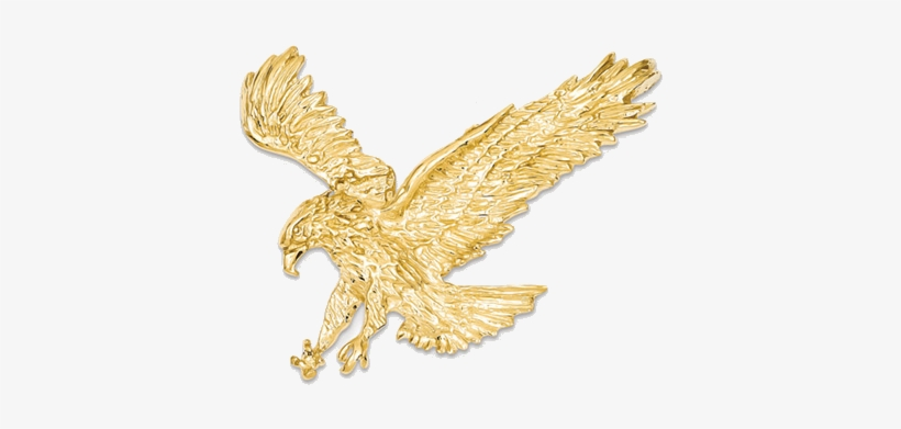 Golden Eagle Png Download.