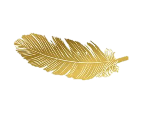 gold feather feathers native boho pretty decals decor.