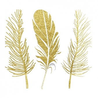 Gold Feathers Clipart.