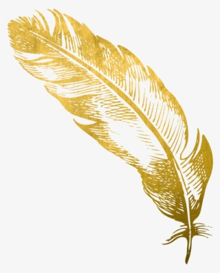 Gold Feather PNG & Download Transparent Gold Feather PNG Images for.