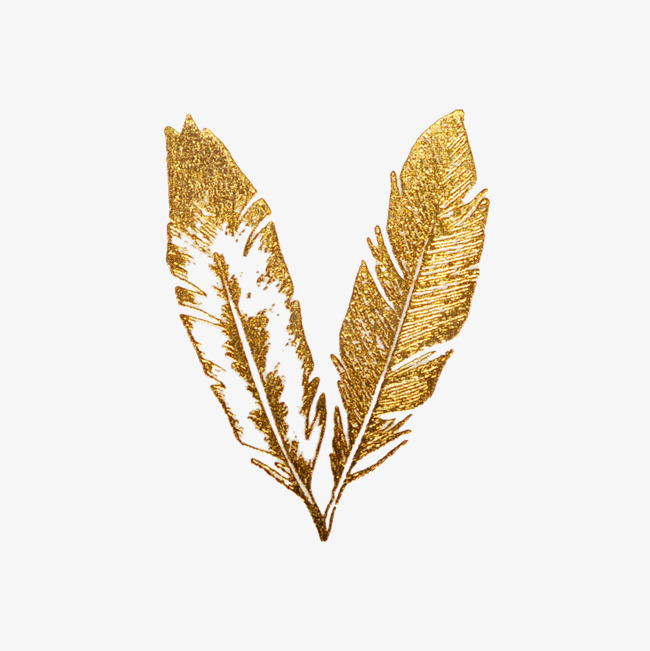 Golden Feather, Golden, Graphic Design, Fine Feathers PNG.